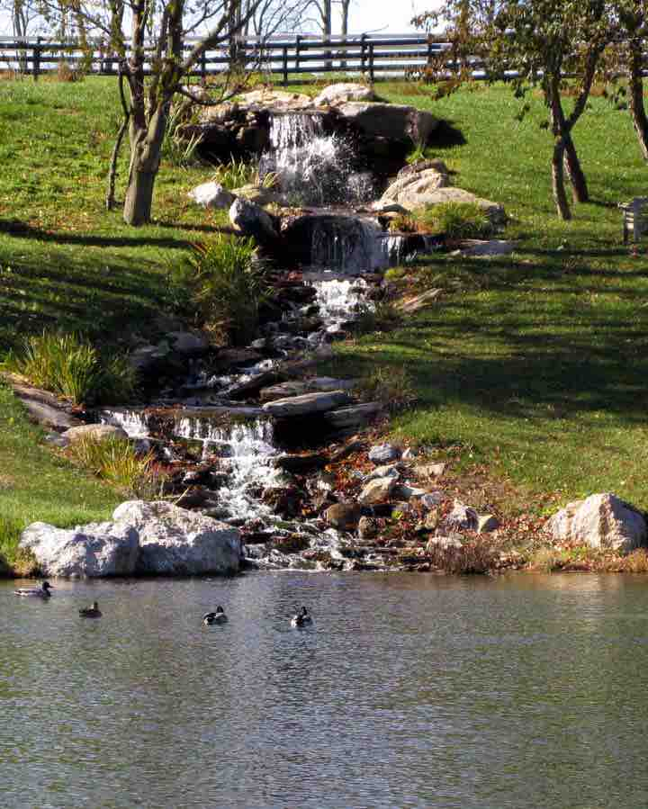 Large waterfall construction for Big pond fish