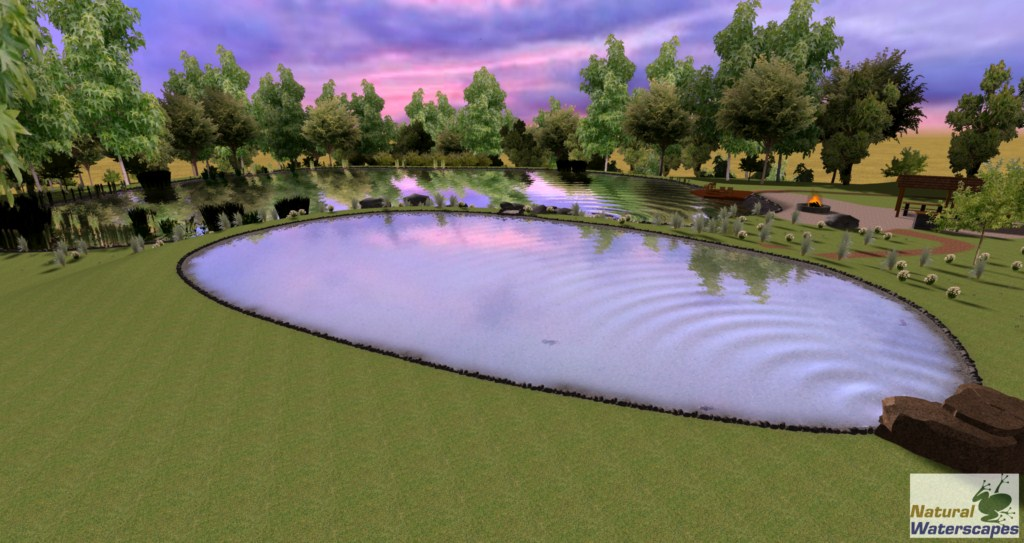 Large Pond Design