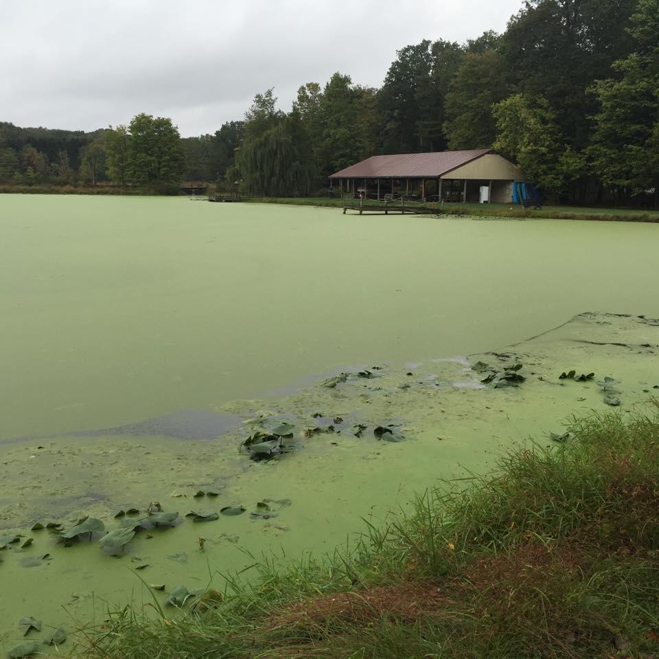 PA pond restoration