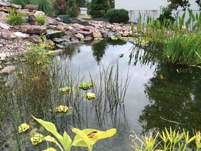 pond supply store PA Muncy Williamsport