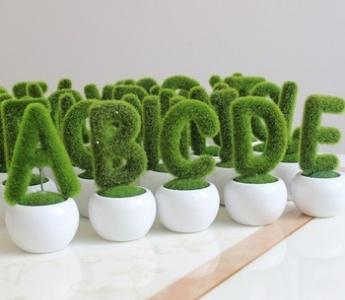 plant-letters.jpg