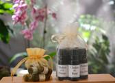 Chakra Healing Essential Oil Blend Set- 2ml