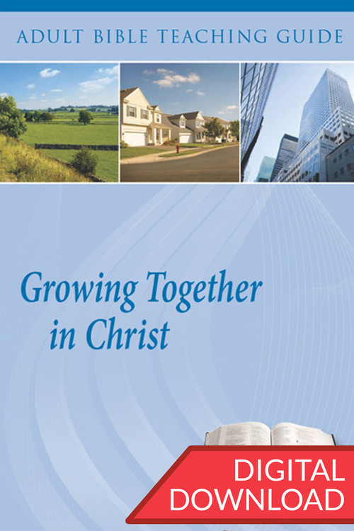 Digital teaching guide containing commentary and teaching plans to lead believers through a series of 14 discipleship lessons on how they can be Growing Together in Christ. PDF; 172 pages.