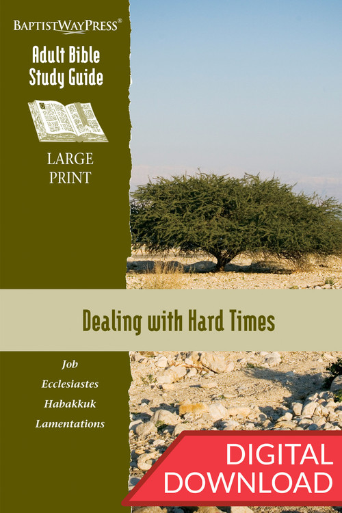 Digital large print Bible study of Job, Ecclesiastes, Habakkuk, and Lamentations. 13 lessons; PDF; 229 pages.