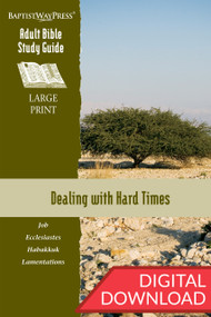 Digital large print Bible study of Job, Ecclesiastes, Habakkuk, and Lamentations. 13 lessons; PDF; 229 pages.
