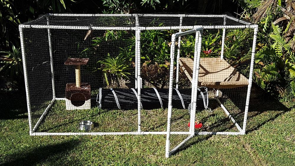 Build Your Own Cat Pet Enclosure Today