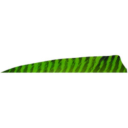 Gateway Shield Cut Feathers Barred Chart 4 in. RW 100 Pk.