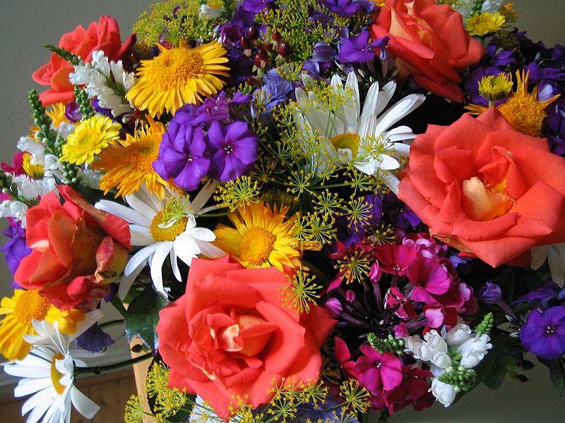 how to choose fresh cut flowers albuquerque florist. Black Bedroom Furniture Sets. Home Design Ideas