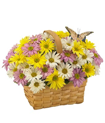 The Meaning Of Easter Flowers Albuquerque Florist