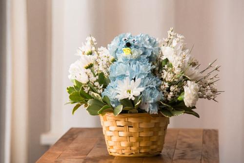Little Boy Blue Albuquerque Florist