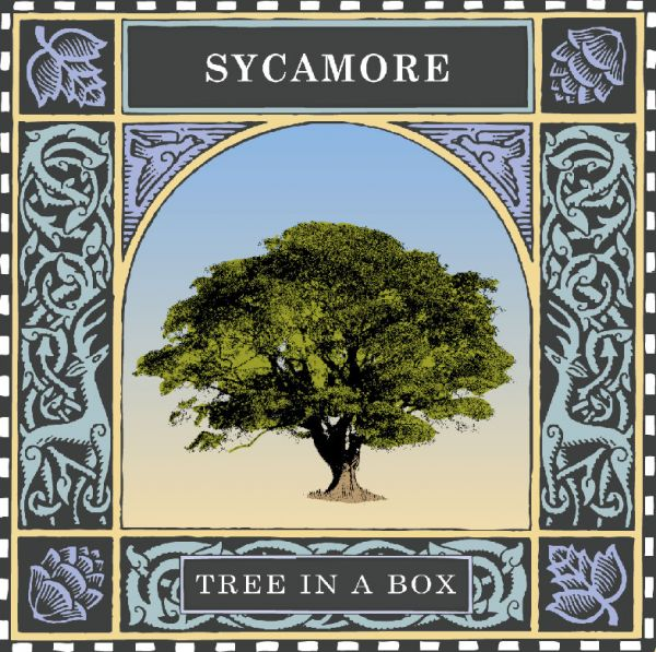 Sycamore book cover