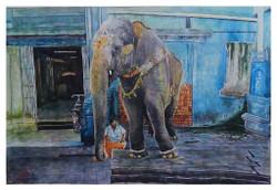 Holy Beautiful Giant Elephant,Man with elephant
