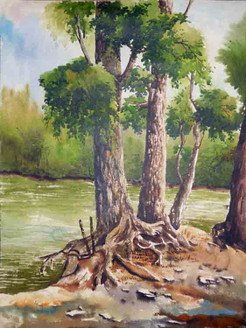 Nature,Tree,Greenery