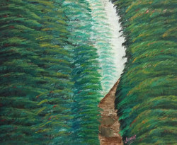 Light Behind Deep Forest-The Path - Handpainted Art Painting - 16in X 14in