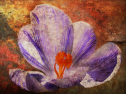 Floral Life 2 - Handpainted Art Painting - 32in X 24in