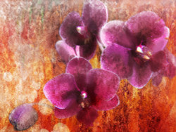 Floral Life 8 - Handpainted Art Painting - 32in X 24in