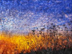 Landscape,Nature,Sunlight,Tree,River