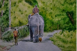 Elephant watercolour Santosh Loni ,Elephant and greenery,ART_715_15190,Artist : Santosh Loni,Water Colors