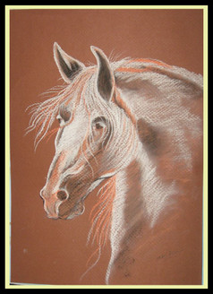 Horse,Horse,ART_1385_11685,Artist : Chitra Ariram,Pastels