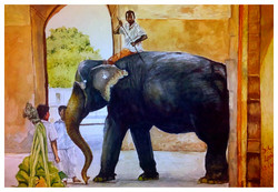 Elephant grace watercolour Santosh Loni ,grace of elephant 13*9,ART_715_5820,Artist : Santosh Loni,Water Colors