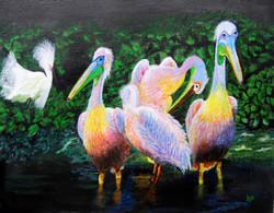 Pelicans  (ART_3461_24984) - Handpainted Art Painting - 18in X 14in