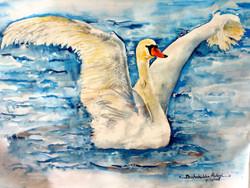 The elegant Swan (ART_4099_25474) - Handpainted Art Painting - 23in X 17in
