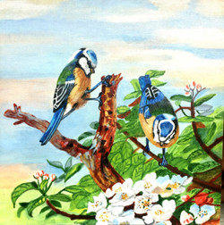 Innocent colourful pair of Birds. (ART_4094_25469) - Handpainted Art Painting - 12in X 12in