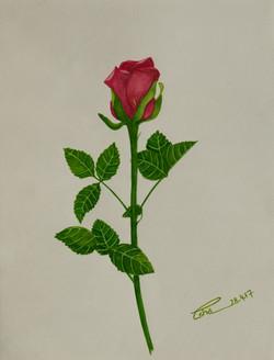 Immortal Memories (ART_4123_25575) - Handpainted Art Painting - 8in X 11in