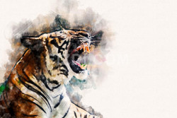 Tiger (PRT_56) - Canvas Art Print - 32in X 21in