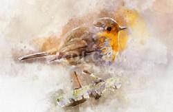 Robin On A Branch (PRT_58) - Canvas Art Print - 32in X 21in