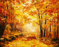 Autumn Forest (PRT_175) - Canvas Art Print - 26in X 20in