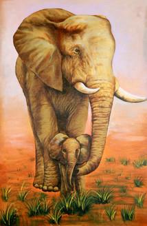 elephant, baby elepahant, wild animals, jungle, safari, elephant with baby elephant, walking elephant