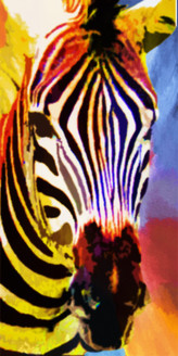28Animal77 - 24in X 48in,28Animal77_2448,Zebra,Animal,Jungle,Nature,Oil Colors,MuCanvas,lti-Color,Rs.3790,Latest Collection;Equestrian Art and Wildlife;By Orientation and Size/Vertical/X.Large (41in to 50in);Full Collection,Community Artists Group,Mu
