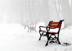 Bench,Snowscape,Red Bench