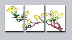 flower, flowers, yellow flower, white flower, blossom