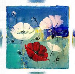 flower, flowers, blossom, bloom, red flowers, white flowers, white flower with blue background, red flower with blue background