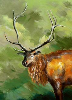 animal, animal painting, wild life, deera, deer with horns, moose, moose painting