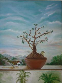 birds, sparrow, tree,plant, sparrow on the tree, morning