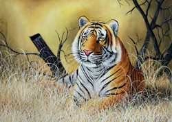 Wild Animal,Tiger,National Animal,The First Look,Yellow Brown Shades