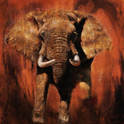 Majestic Elephant - 32in X 32in,28Big03_3232,Community Artists Group,Canvas,Oil Colors,Beautiful,Museum Quality - 100% Handpainted,Modern Art,Animal,Elephant - Buy Painting Online in India.