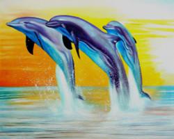 fish, sea, fish in sea, dolphins, mammals, blue doplhins