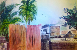 view of real ,Behind Scene,Coconut Tree,Homes