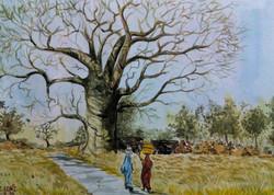 lady, girl woman,woman talkimg, tree, tree , big tree, lady with water