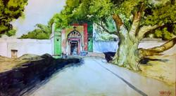 tree, big tree, landscape, peepal , village, temple