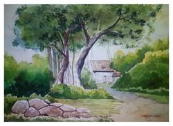 Landscape,Nature,Tree,Greenery