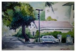 Landscape,Nature,Tree,Greenery,City ,Car