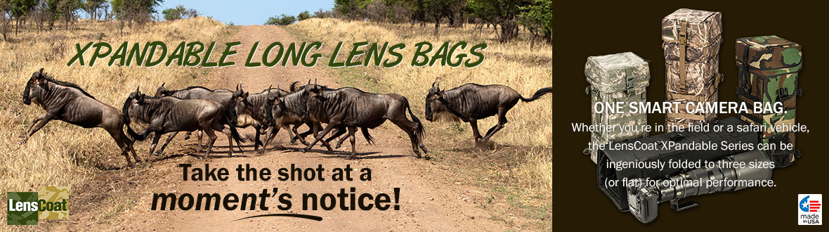 LensCoat XPandable Long Lens Bags | Take the shot at a moment's notice! Whether you're in the field or a safari vehicle, the LensCoat XPandable Series can be ingeniously folded to 3 sizes (or flat) for optimal performance. MADE IN THE USA - Learn More →