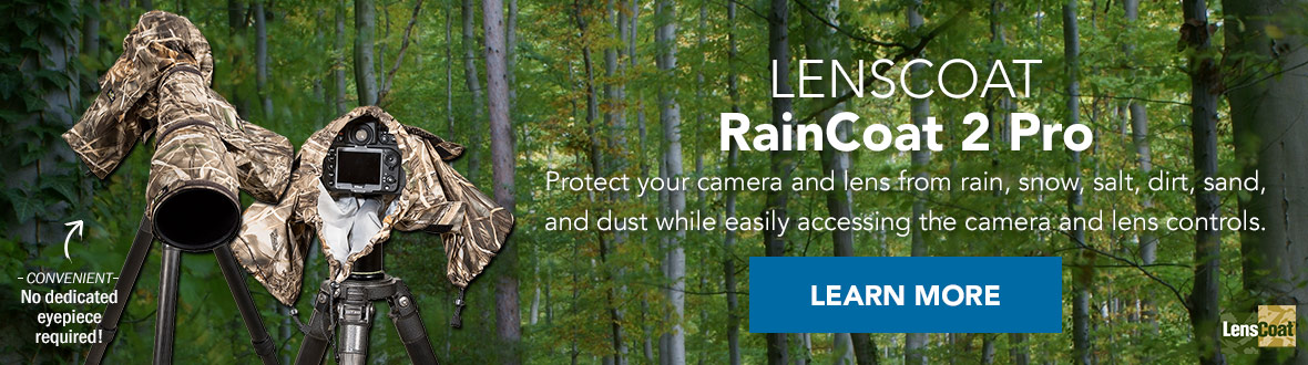 LENSCOAT RainCoat 2 Pro | Protect your camera and lens from rain, snow, salt, dirt, sand, and dust while easily accessing the camera and lens controls. No dedicated eyepiece required! LEARN MORE →