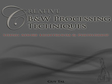Creative B&W Processing Techniques eBook by Guy Tal