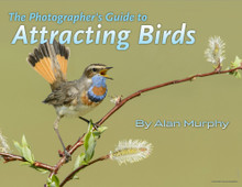 The Photographer's Guide to Attracting Birds eBook by Alan Murphy